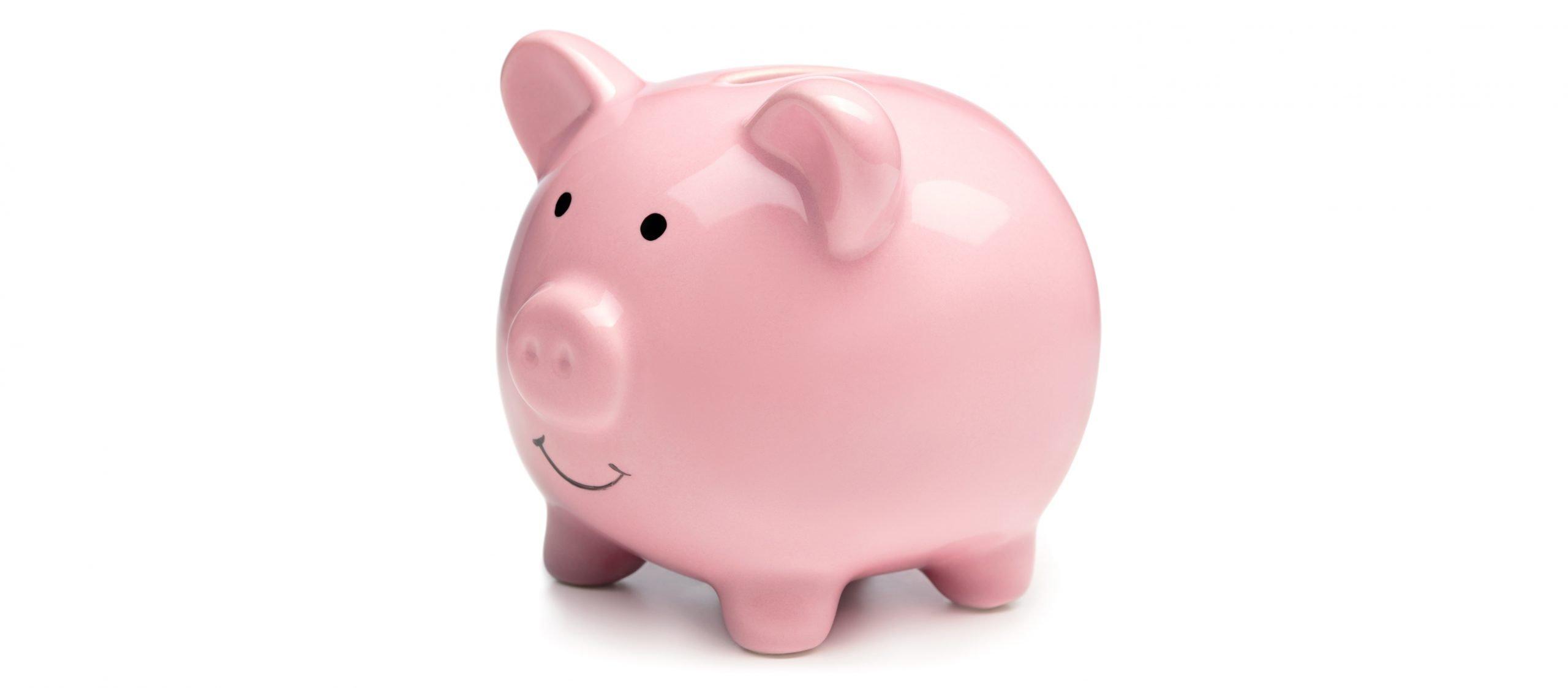 piggy-new